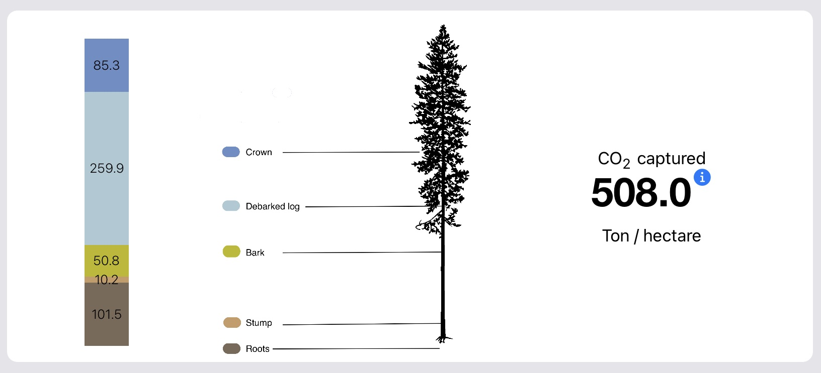 How much carbon does the forest capture?